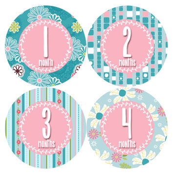 Baby Girl Monthly Baby Stickers Style #396