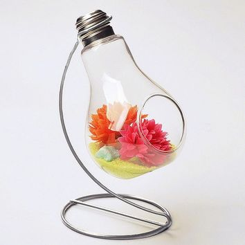 Charming Clear Glass Bulb Vase Air Plant Terrarium / Succulent Planter Container w/ Silver Metal Stand by UCQuality