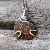 Ammonite Necklace - Shell Fossil Jewelry - Fossilized Ammonite Jewelry - Seashell Fossil Necklace - Bohemian Jewelry - Boho Gypsy Necklace