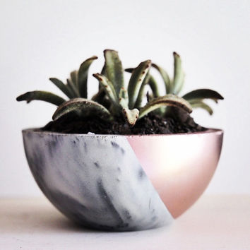 Concrete Planter. Marbled Concrete Planter. Modern Concrete Planter. Succulent Planter. Metallic Concrete Planter. Concrete Bowl Planter.