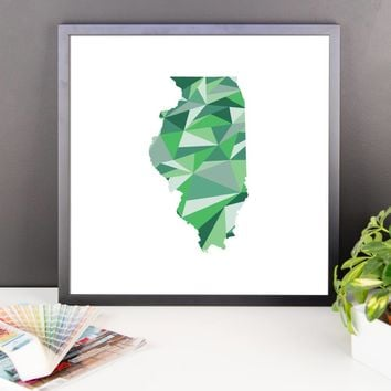 Illinois State Pattern Map Print