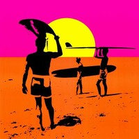 Endless Summer 27x40 Movie Poster (1967)
