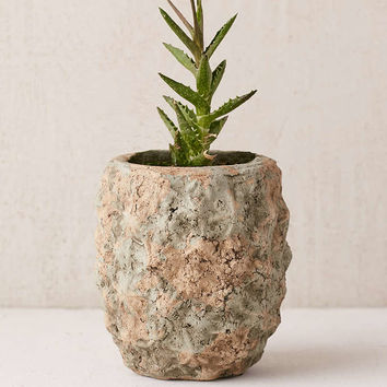 Pineapple Planter - Urban Outfitters