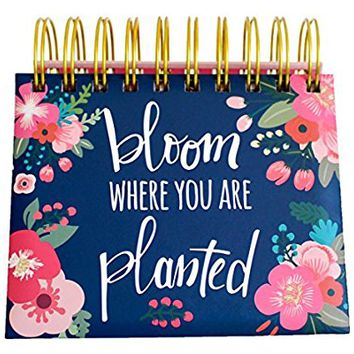 """bloom daily planners Undated Perpetual Desk Easel / Inspirational Standing Flip Calendar - (5.25"""" x 5.5"""")"""