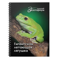 Chinese flying frog (Polypedates dennysi) Spiral Notebook