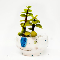 Succulent planter / Plant pot / Succulent vase / Ceramic planter with face / Succulent pots / Ceramics and pottery / Plant holder / Viruset
