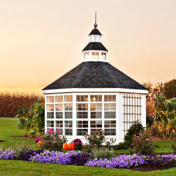 The Garden Shed Greenhouse
