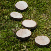 Fairy Garden accessories wood slice Stepping Stones miniatures set of 5