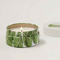 Paddywax Botanical Tin Candle