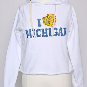 Retro Brand Michigan Cropped Hoodie