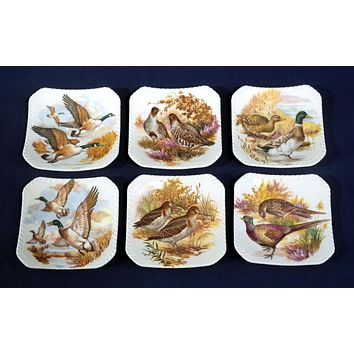 Set of 6 Vintage  Brown English Canape Plates or Nut Dishes Butter Pats Pheasants Ducks Quail Geese Perfect for Fall