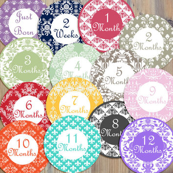 14 Damask Vintage Victorian Cottage Shabby Chic Baby Girl Newborn Monthly Milestone Stickers