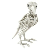 Halloween Crow Skeleton Décor