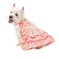 Martha Stewart Pets® Ditsy Floral Dress - Sale - Dog - PetSmart