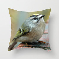 ONCE I HEARD A SONG Throw Pillow by dh | mk photo | Society6