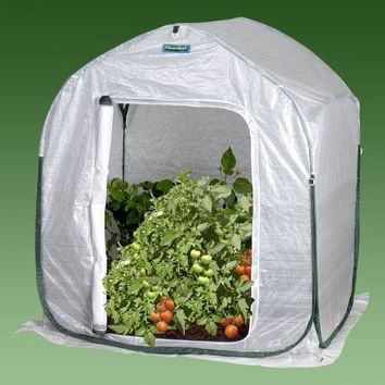 Plant-House Home Garden Cold Frame Style Greenhouse (3' x 3')