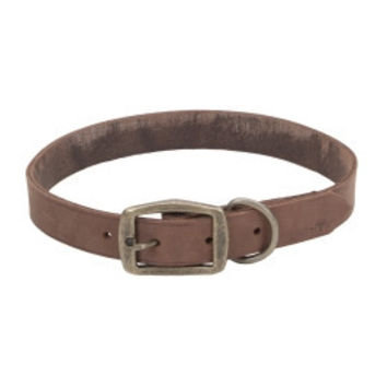 "Coastal Circle T Leather Town Dog Collar 1"" x 20"" Brown"