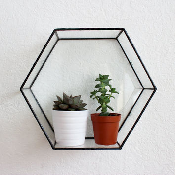 Varro Hexagon Glass Wall Display Shelf