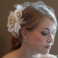 Ivory Blusher Birdcage Veil with Double by brendasbridalveils
