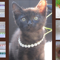 Birthstone Pearl Cat Collar, Dog Pearl Collar, Hand Knotted Cat Dog Jewelry Collar with Magnetic Clasp, Holiday Pet Gifts