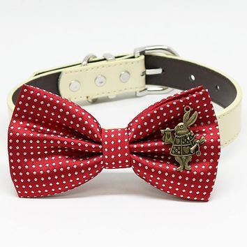 Red Polka Dots Dog bow tie collar, Charm(Alice In Wonderland), Rabbit, Birthday gift, Pet Wedding