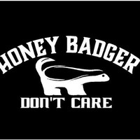 Honey Badger Don't Care Decal Car Decal Vinyl Decal Sticker Custom Car Vehicle Auto Decal Honey Badger Decal