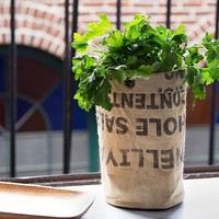 Urban Agriculture | Herb Growing Kit