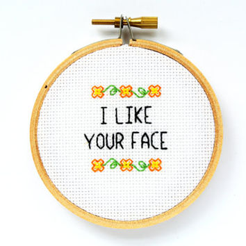 ON SALE I Like Your Face Mini Cross Stitch Kit - Funny Cross Stitch - Gift For Best Friend - Anniversary Gift - Diy Hoop Art -Modern Cross S