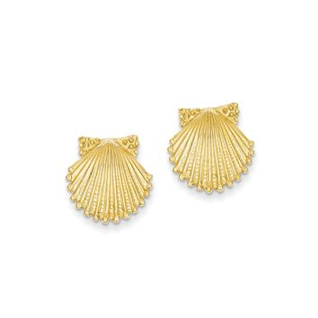 14mm Scalloped Shell Post Earrings in 14k Yellow Gold