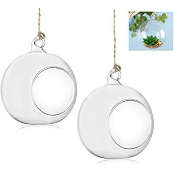 Set of 2 Hanging Globe Air Plant Terrarium, Clear Glass Orbs Succulent Air Plant Container Kit with Hanging String (4 Inch)