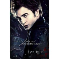 Twilight - Edward Broken Glass