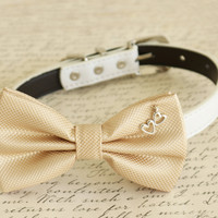 Champagne Dog Bow tie, Bow attached to dog collar