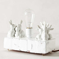 Anthropologie - Bunny Love Light