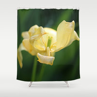 Opening Night Shower Curtain by Theresa Campbell D'August Art
