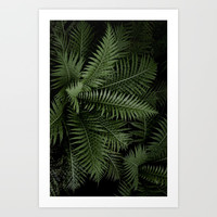 Tropical leaves 02 Art Print by vanessagf