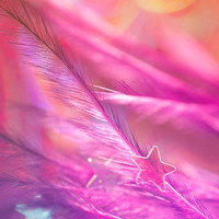 Shooting stars | Colorful Bokeh Bright Pink Feather Sequin Star Magical Dreamy Rainbow Zen Photography Decor Children Bedroom Home Bathroom