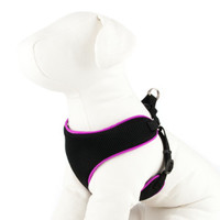 Top Paw Dog Harness | Harnesses | PetSmart