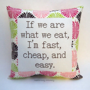 Funny Cross Stitch Pillow, Pink Green And Brown Pillow, We Are What We Eat Quote