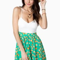 Falling Daisies Day Dress