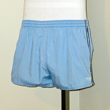 Vintage Amazing 80s BEACH SURF California Shores Blue Men Women Small Work Out Lined Swim SHORTS
