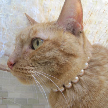 Champagne Pearl Cat Collar, Hand Knotted Cat Jewelry Collar with Magnetic Ball Clasp, Holiday Pet Gifts