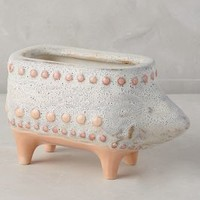 Charming Critter Planter by Anthropologie