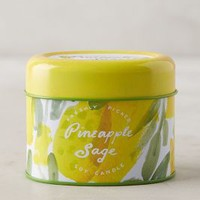 Illume Freshly Picked Candle by Anthropologie