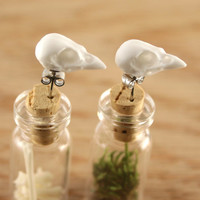 bird skull earrings - miniature sparrow skull studs - snow white