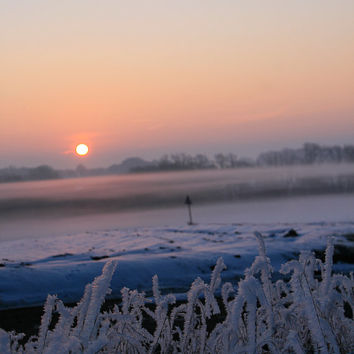Greetings Card - Frozen Morning - 127mm x 178mm (Blank inside)