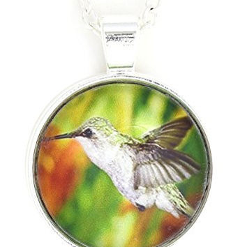 Hummingbird Necklace Silver Tone NW13 Green Photo Print Pendant Bird Fashion Jewelry