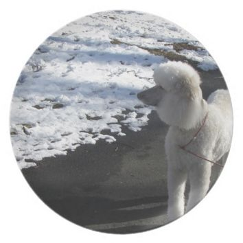 White Poodle by the Snow Melamine Plate