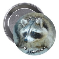 Raccoon Face Button