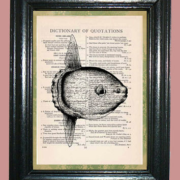 Sea Life Sunfish - Vintage Dictionary Page Book Art Print Upcycled Book Art Print on Dictionary Page Collage Art Fish Print
