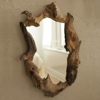Wooden root mirror | My Sparrow